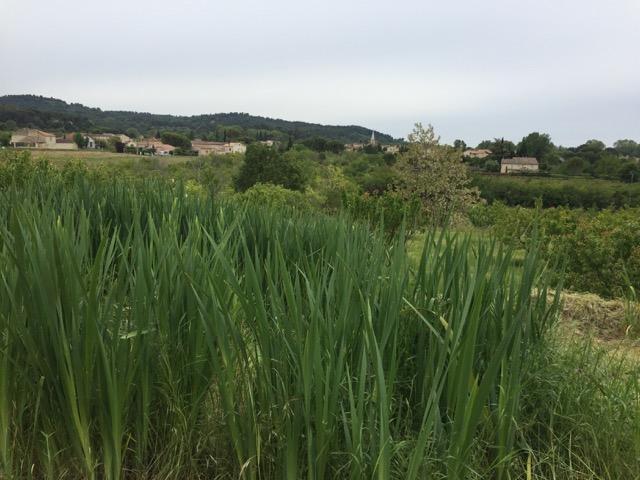 13b vue village