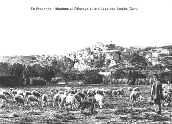 14 pied du village 1902
